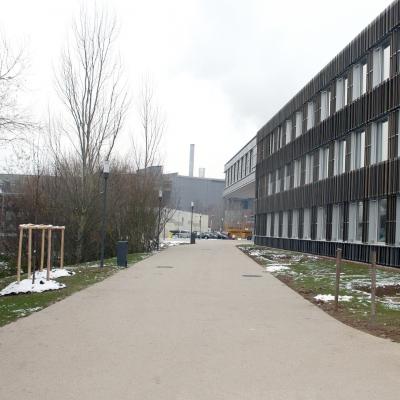 Aménagements extérieurs du lycée provisoire